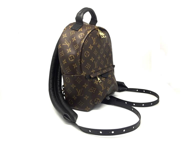 Louis Vuitton Palm Springs PM Monogram Backpack 2