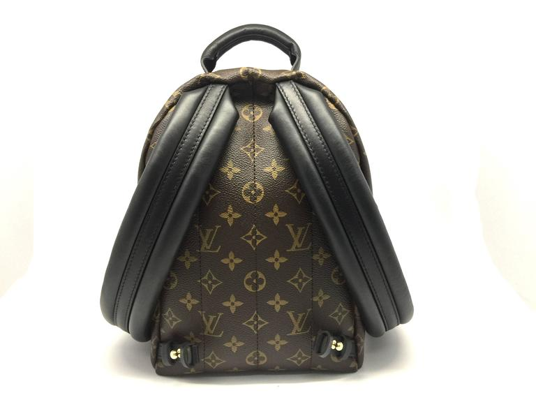 Louis Vuitton Palm Springs PM Monogram Backpack 3