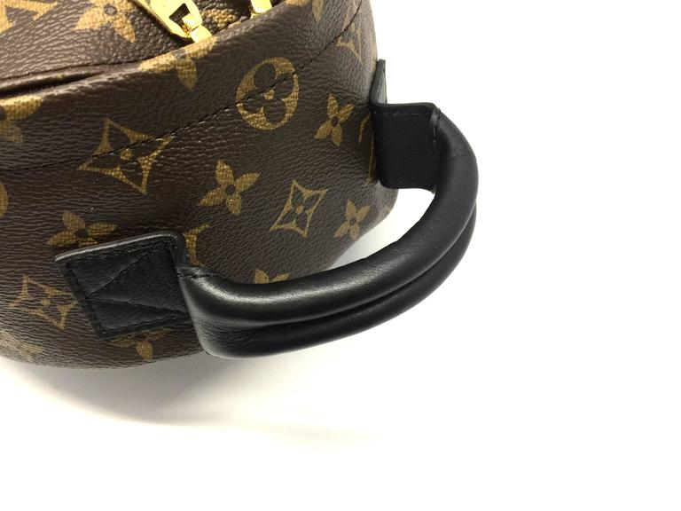 Louis Vuitton Palm Springs PM Monogram Backpack 5