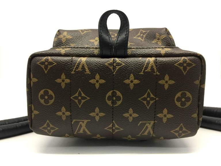 Louis Vuitton Palm Springs PM Monogram Backpack 4