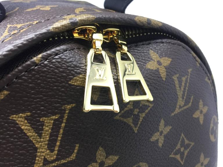Louis Vuitton Palm Springs PM Monogram Backpack 10