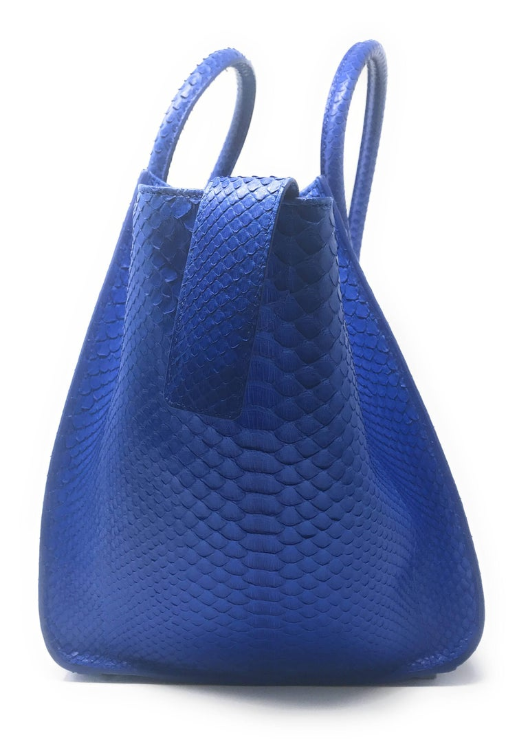 Celine Phantom Blue Python Bag For Sale 1