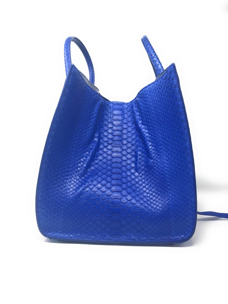 Celine Phantom Blue Python Bag For Sale 3