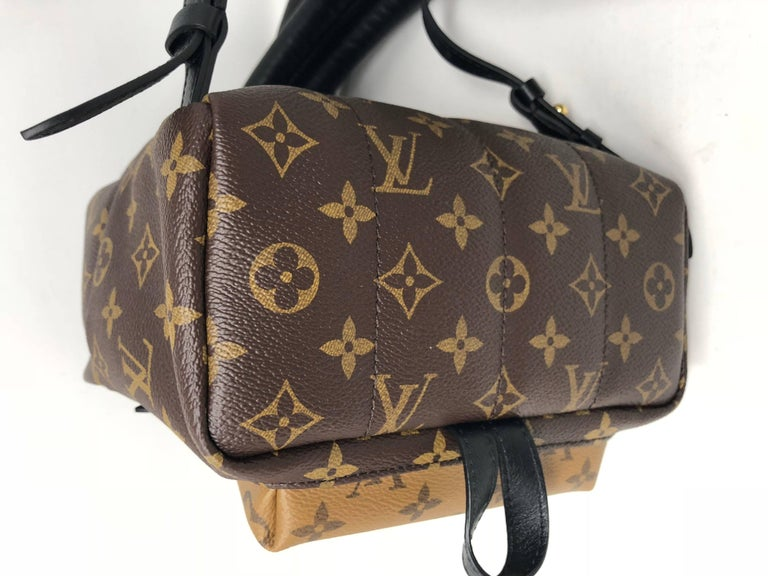 Louis Vuitton Reverse Palm Springs Backpack PM For Sale 2