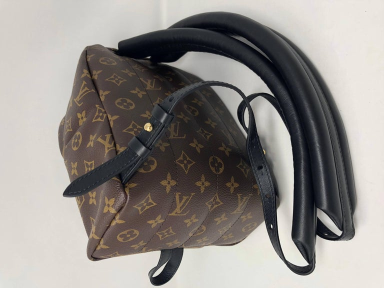 Louis Vuitton Reverse Palm Springs Backpack PM For Sale 3