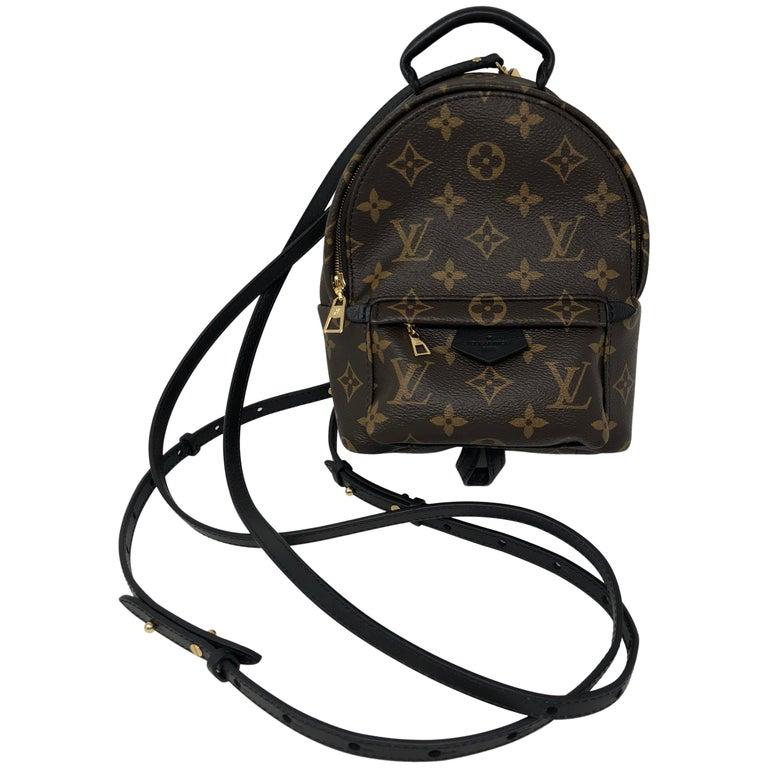 Louis Vuitton Palm Springs Mini Crossbody / Backpack