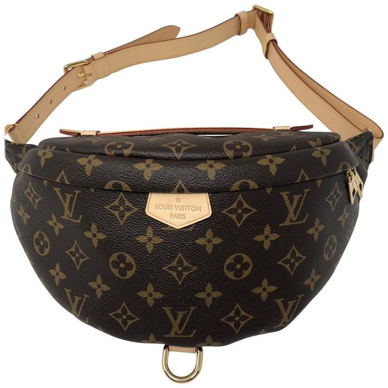 Louis Vuitton Bum Bag