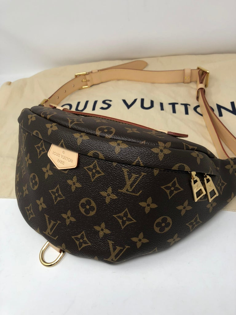 Louis Vuitton Bum Bag At 1stdibs