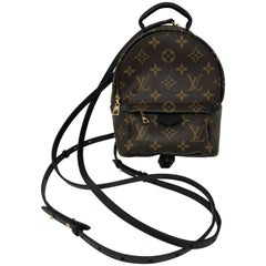 Louis Vuitton Palm Springs Mini Crossbody / Backpack