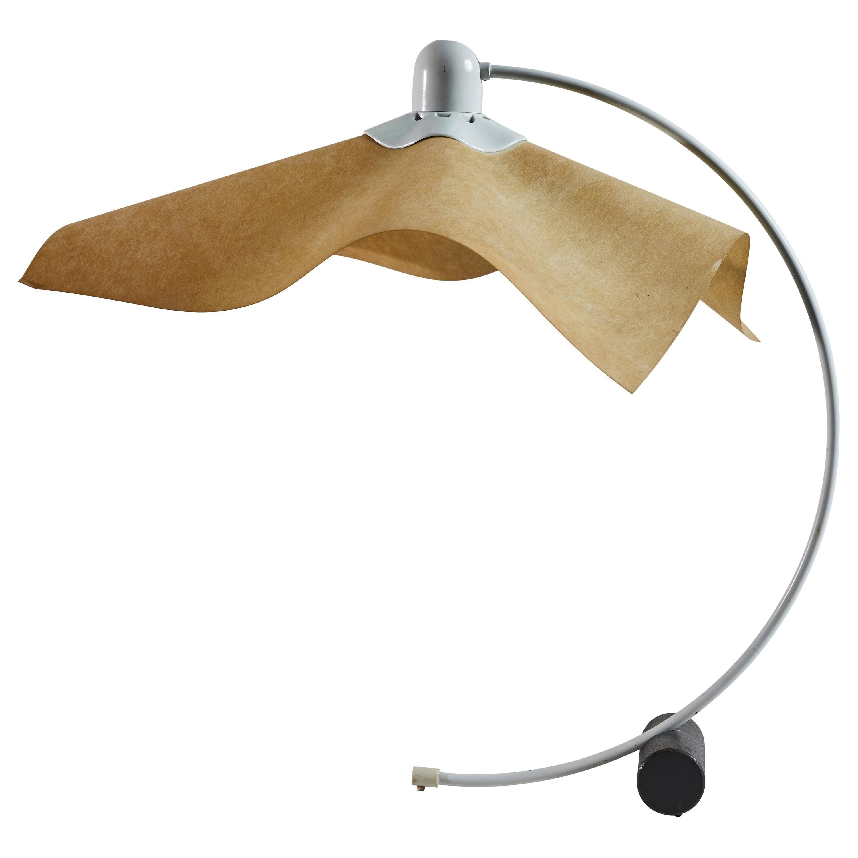 Area Desk Lamp