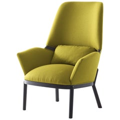 Arflex Serena Armchair in Lama Fabric with Wenge Stained Legs by Luca Nichetto