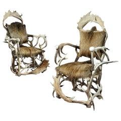 Armchair, Pair, Hunting Trophy, Antler, Red Deer, Fallow, Wild Boar, Hide