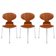 """Arne Jacobsen """"Ant"""" Model-3100 Teak Chair for Fritz Hansen"""