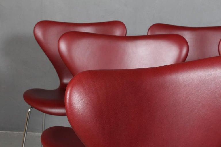Scandinavian Modern Arne Jacobsen Dining Chair For Sale