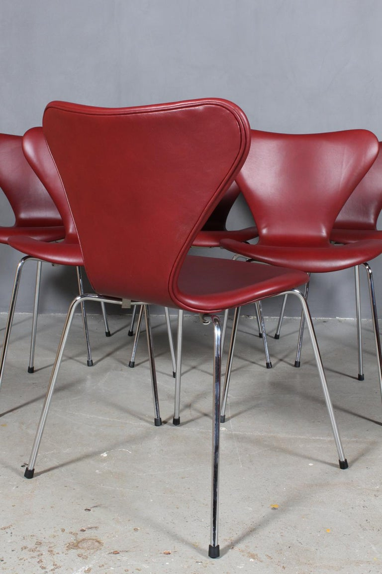 Leather Arne Jacobsen Dining Chair For Sale