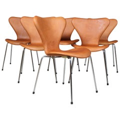 Arne Jacobsen Dining Chair