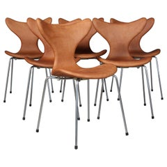 Arne Jacobsen, Seagull, Dining Chair