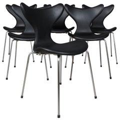 Arne Jacobsen, Seagull, Dining Chair