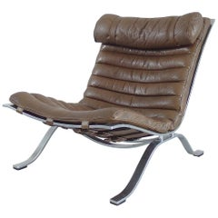 "Arne Norell ""Ari"" Lounge Chair in Bronze/Brown Original Leather, Sweden, 1966"