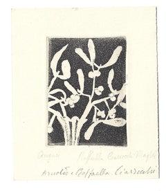 Il Vischio (Mistletoe) - Original Etching by Arnoldo Ciarrocchi - 1960s