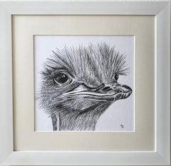 Animal Black and White Handmade Sketches