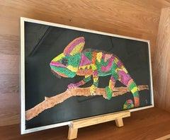 Colorful Gecko Lizard