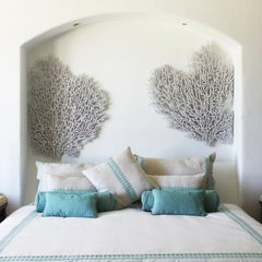 Fine Corals. Organic Sculpture. Natural Textures