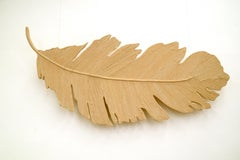 Floating elegant hand made feather wall art ideal for modern spaces