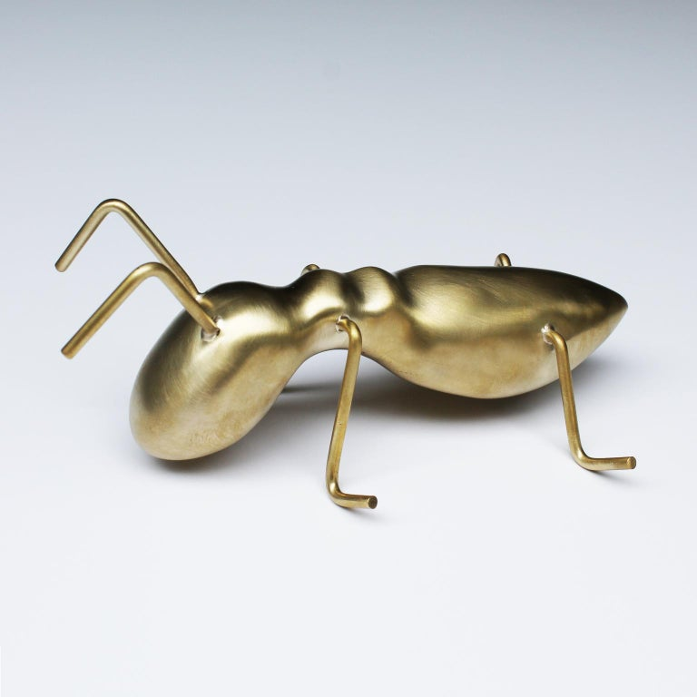 Golden Ant For Sale 6