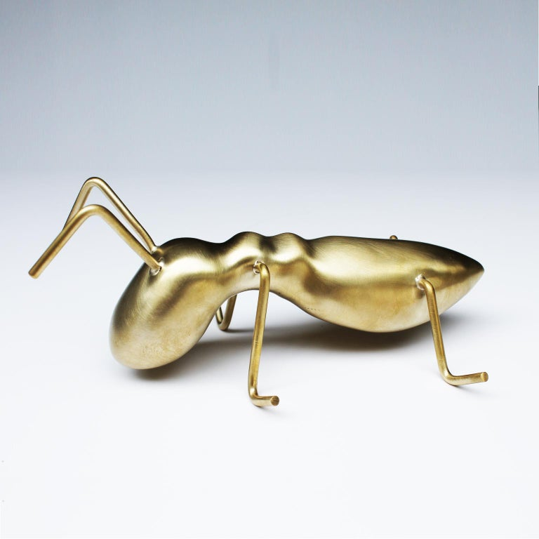 Golden Ant For Sale 1