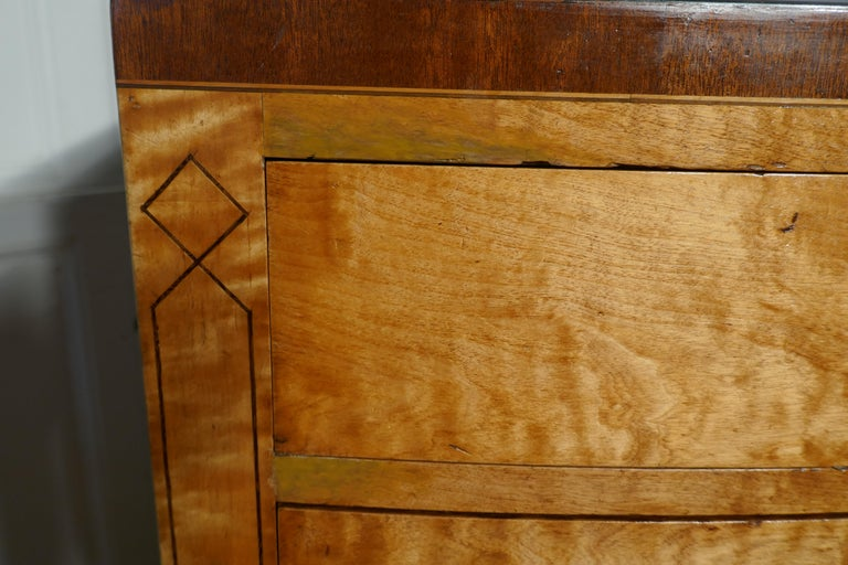 Art Deco 4 Drawer Bow Front Chest of Drawers in Bird's-Eye Maple For Sale 4
