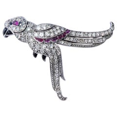 Art Deco Diamond Ruby Onyx 18 Karat Gold Parrot Brooch
