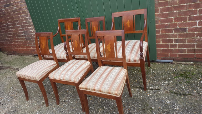 Set of 6 antique Swedish flame golden birch Art Deco dining chairs with the distinctive inlaid seat backs with beautiful detailed marquetry figures of woman.  The top grade flame veneers are brought to life by the sought after darker honey color