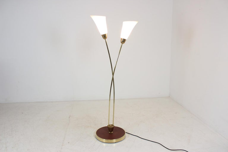 Mid-Century Modern Art Deco Floor Lamp, Czechoslovakia For Sale