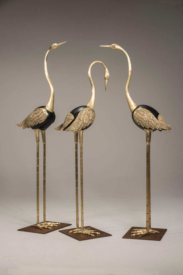 Three Italian Art Deco sculptures representing standing flamingos with three different poses of the head and the neck. They are made of brass, with central rounded body lacquered in black. The wings are finely worked with feathers effect. They have