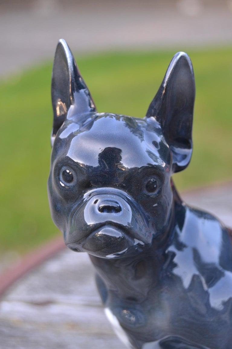Art Deco Porcelain French Bulldog by Otto Thiem, Fraureuth Germany, 1920s In Good Condition For Sale In Antwerp, BE