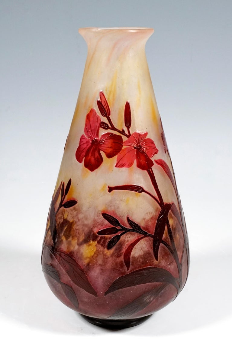Conical shaped vase with flared, rounded mouth rim, colorless glass with flaky white, yellow and red-violet powder melts, burgundy-magenta-colored overlay, high-cut dames-wort flowers decor, satined surface in the background, relief signature 'DAUM