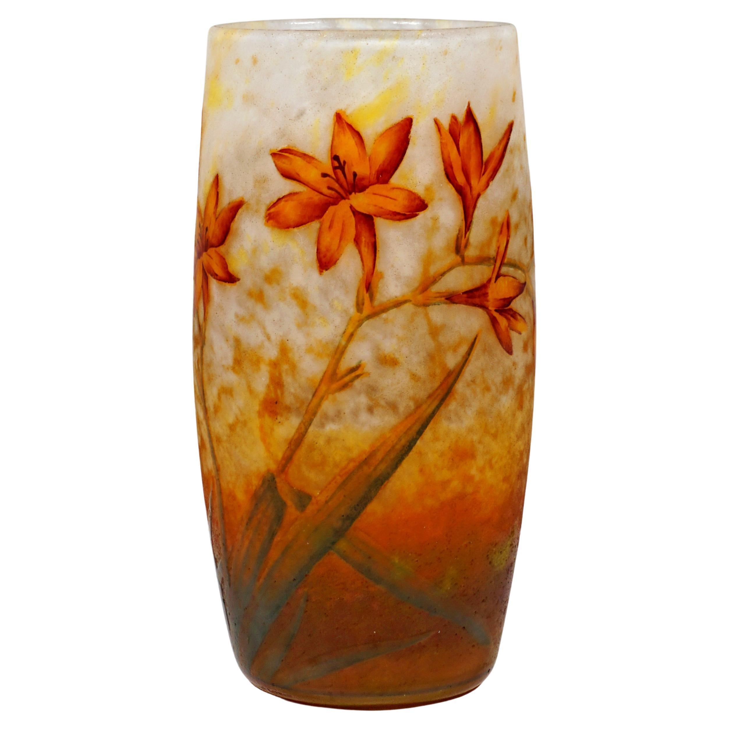 Art Nouveau Cameo Vase with Daylily Decor, Daum Nancy, France, 1900/05