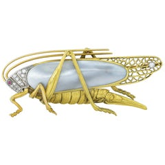 Art Nouveau Grasshopper Brooch
