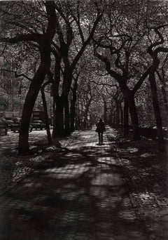 Follow (Figures along a brick path under a tree canopy in NYC Central Park)