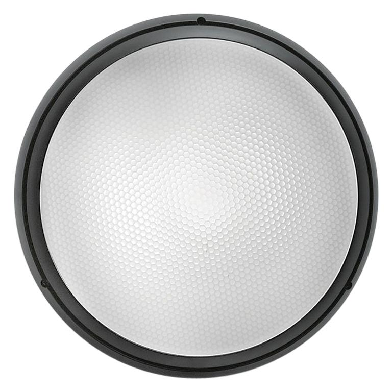 Artemide Pantarei 190 Wall and Ceiling Light in Black