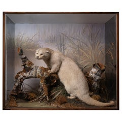 Artful Diorama with Full Mount European Otter 'Lutra Lutra' by Peter Spicer
