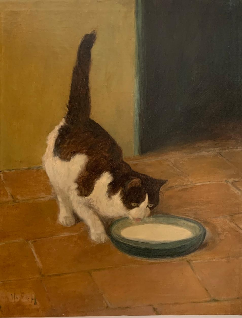 Brown and White Cat Drinking Milk From a Bowl