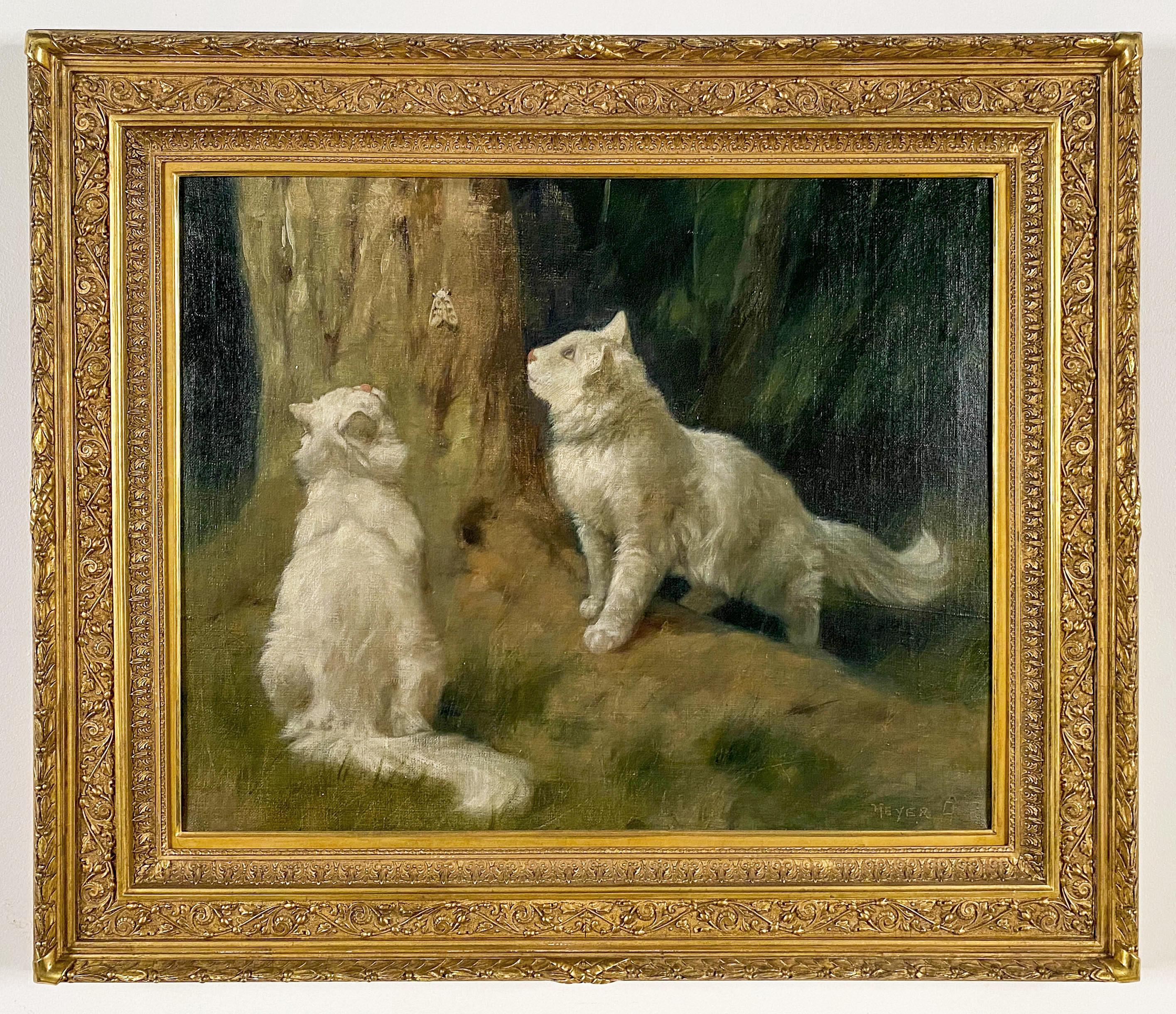 White Angora Cats