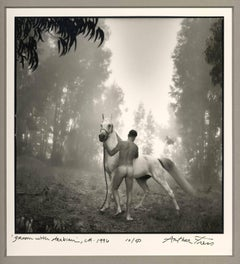 Groom with Arabian (white stallion groomed by a nude male in a leafy landscape)