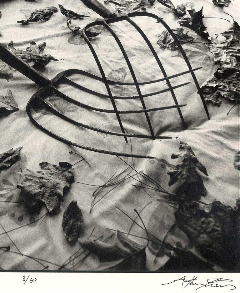 Making Leaves (a sexy still life where 2 rakes and some leaves turn up the heat) - Contemporary Photograph by Arthur Tress