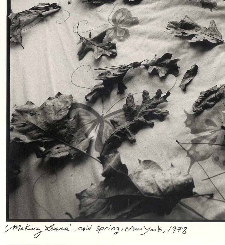 Making Leaves (a sexy still life where 2 rakes and some leaves turn up the heat) - Gray Still-Life Photograph by Arthur Tress