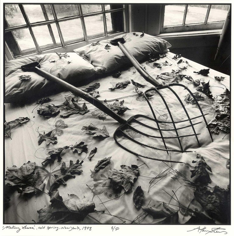 Tress uses a bed, the juxtaposition of two rakes and a scattering of fallen leaves to enter a sexy anthropomorphic world. Often men are called