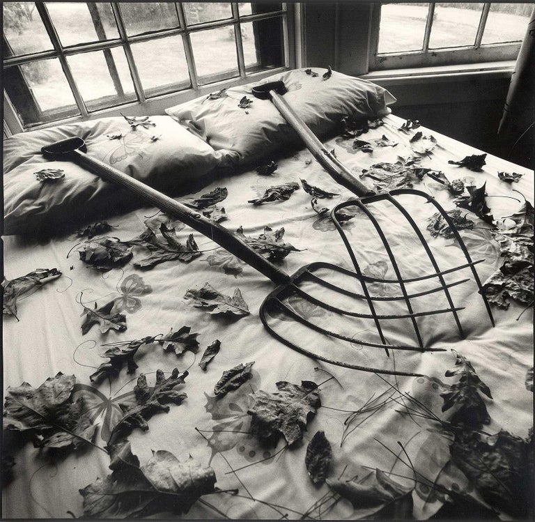 Arthur Tress Still-Life Photograph - Making Leaves (a sexy still life where 2 rakes and some leaves turn up the heat)