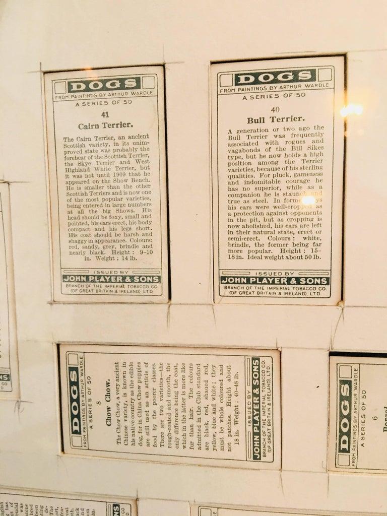 Arthur Wardle Framed Cigarette Cards 5